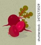 beetroot and halves of beetroot ... | Shutterstock .eps vector #1472173529