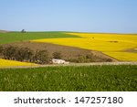 bright yellow rapeseed fields... | Shutterstock . vector #147257180