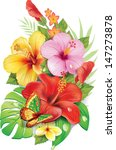 bouquet of tropical flowers | Shutterstock .eps vector #147273878