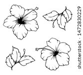 set of hibiscus flowers and...   Shutterstock .eps vector #1472830229