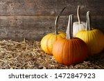 Beautiful Halloween Pumpkins In ...