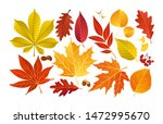 vector set of colorful autumn... | Shutterstock .eps vector #1472995670