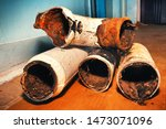 replacing old sewer pipes in an ...   Shutterstock . vector #1473071096