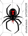 Spider Black Widow, cobweb. Red black spider 3D, spiderweb, isolated white background. Scary Halloween decoration icon web. Symbol networking, animal arachnid, creepy insect fear Vector illustration