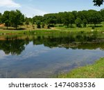 Reflections At A Lake By The...