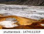 Mammoth Hot Springs in Yellowstone National Park. Springs are heated up by magma chamber below.
