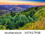forest on the slopes of high mountains in the morning - stock photo
