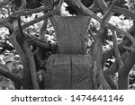 Black And White Photo Of Wooden ...