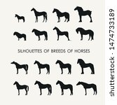 vector silhouettes of 16...   Shutterstock .eps vector #1474733189