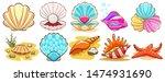 seashell vector set graphic... | Shutterstock .eps vector #1474931690