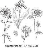sketchy ornamental flowers... | Shutterstock .eps vector #14751268