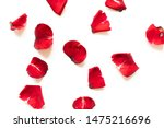 Stock photo rose petals isolated on white background 1475216696