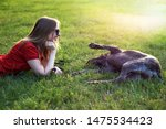 Stock photo girl in red clothing and sunglasses playing with the dog in the green grass on a sunny lawn 1475534423