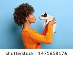 Stock photo adult afro girl stands in profile raises little puppy in air wants to kiss pet expresses 1475658176