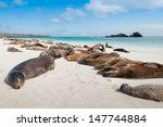 Espanola Island Galapagos With...