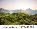 hiking man in canadian... | Shutterstock . vector #1477642706