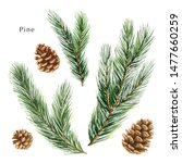 christmas set with green pine... | Shutterstock . vector #1477660259