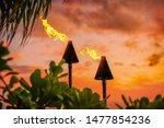Hawaii Luau Party Maui Fire...