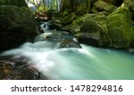 Magical stream in the heart of the green forest on a sunny morning through the leaves - stock photo