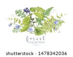 watercolor detailed composition ... | Shutterstock . vector #1478342036