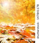 Bright Autumn Background Made...