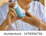 Elderly Female's Hand Holding...