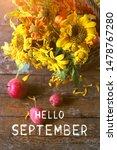 Hello September. Autumn Flower...