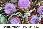 Artichoke Purple Flowers...