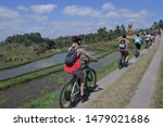 Small photo of BALI - JULY 28 2019:Biking tour to rice field in Jatiluwih rice terraces in Bali Indonesia.In 2002 environmental group formed to protect Bali's ecosystems while continuing to grow the tourism trade.