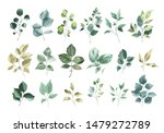 collection of watercolor... | Shutterstock . vector #1479272789