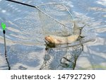 Close Up Of A Fishing Net With...