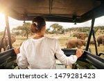 Woman Tourist On A Safari In...