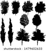 collection of vector trees in... | Shutterstock .eps vector #1479602633