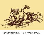 Drawing Of A Cat Flying On A...