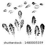 imprints of dandelion leaves....   Shutterstock .eps vector #1480005359