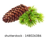 Pine Tree Branch With Cone...