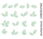 set of isolated green leaves...   Shutterstock .eps vector #1480301960