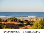 Sand dunes on the beach of La Barrosa in Sancti Petri, Cadiz, Spain