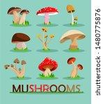 Mushrooms Set.  Mushrooms...