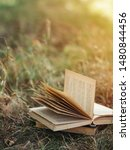 The Old Book Lies On The Grass...