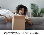 Small photo of Excited african American young woman sit on couch at home unpack cardboard box shopping online, overjoyed black millennial girl buyer feel euphoric open shipped package parcel from delivery service