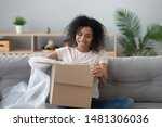 Small photo of Smiling african American millennial girl sit on sofa at home open cardboard delivery package shopping online, excited black young woman unpack unwrap parcel buying good via internet or web