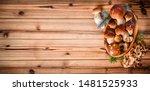 Fresh Boletus Mushrooms In...