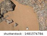 natural background   wet sand...   Shutterstock . vector #1481576786