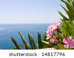 Mediterranean Sea And Oleander...