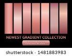 gold rose metal gradient chrome ... | Shutterstock .eps vector #1481883983