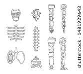 bionic robot skull  spine ...   Shutterstock .eps vector #1481929643