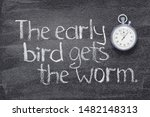 The Early Bird Gets The Worm...