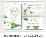 set of vector delicate... | Shutterstock .eps vector #1482215600