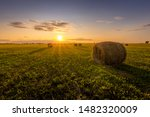 A Field With Haystacks On A...